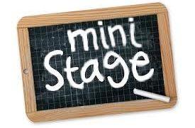 mini-stage.jpeg